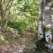 1068     神璽谷~釈迦岳~中井新道(比良 209)  2017.09.23(土) 曇り