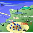 宇宙監視レーダーやミサイル防衛強化などで日本は自国と世界の防衛に向き合うべきである!!