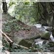猿投温泉鈴ヶ滝