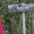 新緑の中央沿線;藤野アルプスと芸術の道を歩く(3);名倉峠から金剛山へ