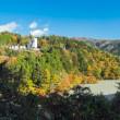 井川湖 夢の吊橋