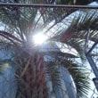 10/18 sunny