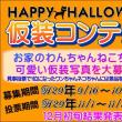 ★Halloween 写真仮装コンテスト★