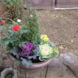 お正月用の花鉢、
