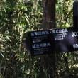 早春の鎌倉散策 2