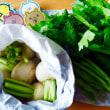 新鮮な野菜たち♫