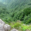 大峰山<山上ヶ岳>登山 其の二(2017年7月22日登山)