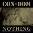 パワエレCon-Dom : Nothing live「戦争・改憲に狂奔する安倍一味を倒せ!」