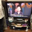 テレビっ子フローラシリーズ