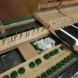 ピアノの中のネズミの巣