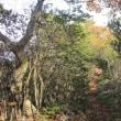 亀山から的場山(たつの市)