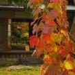 奈良家の秋
