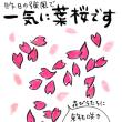一気に葉桜