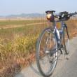 寄島へ牡蠣サイクリング