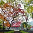 足利市・長林寺の紅葉