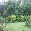 今日の夜中 台風が最接近