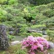 晩春の京都 その1
