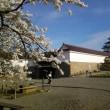 今日は「クリーン鶴ヶ城作戦」と「まちづくり講演会」ですφ(・ω・`)