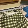 寝袋が好きなドゥさん
