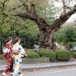 金沢の街には和服が似合います