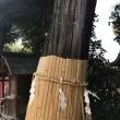 伊奴神社 (いぬ神社)
