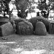 淀江町亀甲神社のサイノカミ