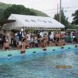 水泳大会開催