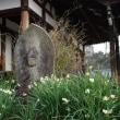 笹酒祭り(大安寺)&スイセン(般若寺)