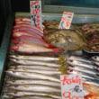 今日の魚屋さん