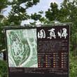 二子玉川付近の坂道(2)