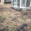 雑草だらけの庭を リノベーションする 茨城 守谷