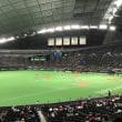 ファイターズ対マリーンズ / 札幌ドーム