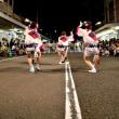鳴門市の阿波踊り