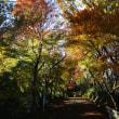 八幡山ナゥ