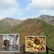 韓国釜山の花火大会