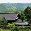 山里の高尾邸を訪れる-ぷぶふの日②