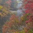 「秋雨に煙る渓谷」 いわき 夏井川渓谷にて撮影!