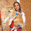 多分日本で三番目に有名な秋田犬になった「マサル」