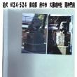 狛犬 No24-524 東京都 府中市 大國魂神社 隨神門前