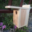 田布施町少年少女発明クラブ、10月の木工工作の見本を制作(1/2)