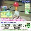[う山先生・分数]【算数・数学】【う山先生からの挑戦状】分数679問目[Fraction]