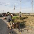 伝統文化G『小池農園作業』を紹介します。