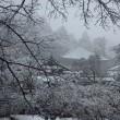 奈良も雨から雪に!。