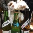 布引の滝と冬の日本酒会