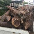 福岡市で不要品の木を回収、処分来ました