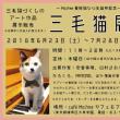 三毛猫展 ~Mo.free 看板猫なつ生誕祭記念~ 三毛猫づくしのアート展示販売