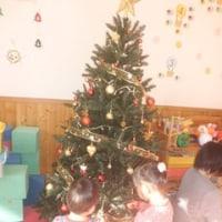 クリスマスツリー  たちばなクラブ