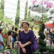 近代化 見事なシンガポ-ル
