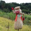 篠窪(しのくぼ)の隣町 秦野市田原ふるさと公園で「ブルゾンちえみ」に会ってきました
