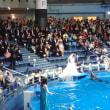 品川アクアパークの結婚式